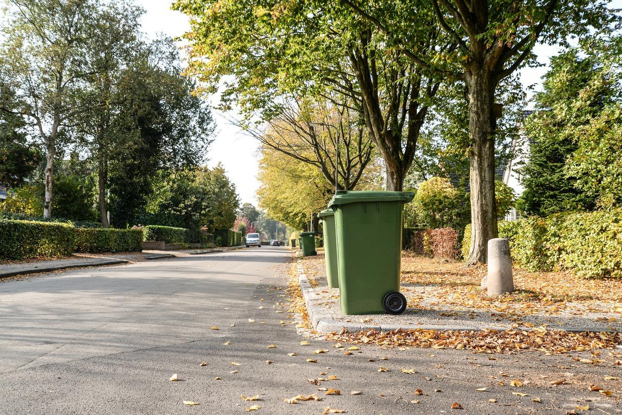 Pojemniki na śmieci na ulicy (pixabay.com).jpeg