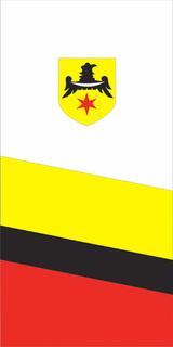 Flaga pionowa gminy Namysłów.jpeg