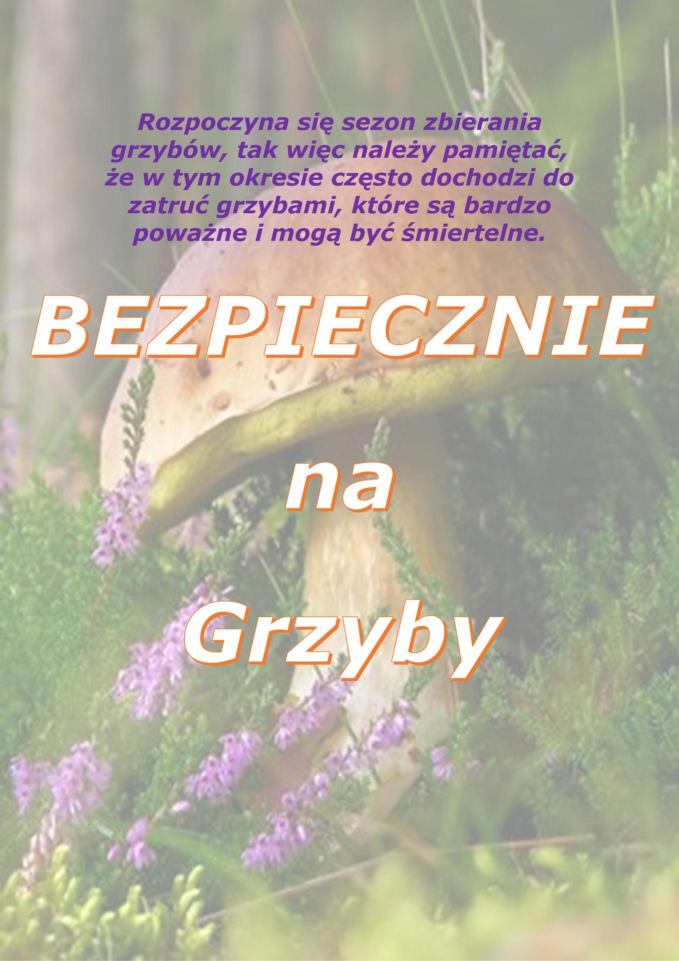 GRZYBOBRANIE_2017_-_ulotka-1.jpeg
