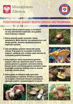 Podstawowe zasady bezpiecznego grzybobrania.jpeg