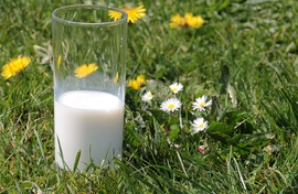 milk-1377569_1920.jpeg