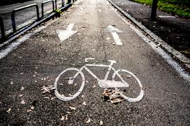 droga rowerowa.jpeg