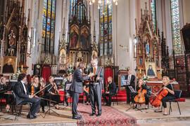 Galeria koncerty organowe