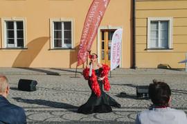 Galeria operetka